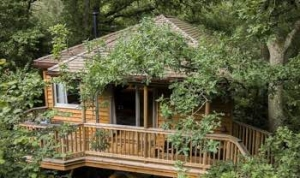 A romantic tree house for couples off the beaten track near Bewl Water, East Sussex Kent