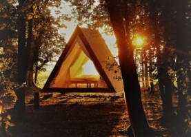 Hampshire Glamping Winchester | The Glade