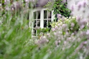 UK holiday cottages with late availability