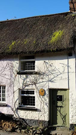 Little Owl Cottage, Exmoor