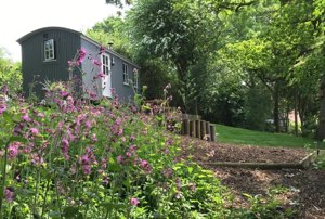 Shepherd's Hut near London | Shepherd's Hide Essex Coast