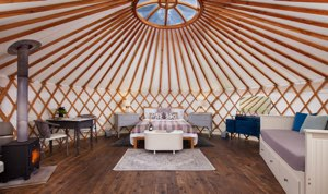 Cedar Yurt Retreat, Crewkerne